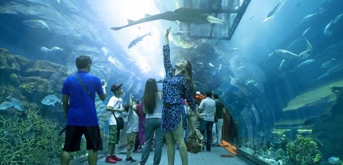Acvariul din Dubai